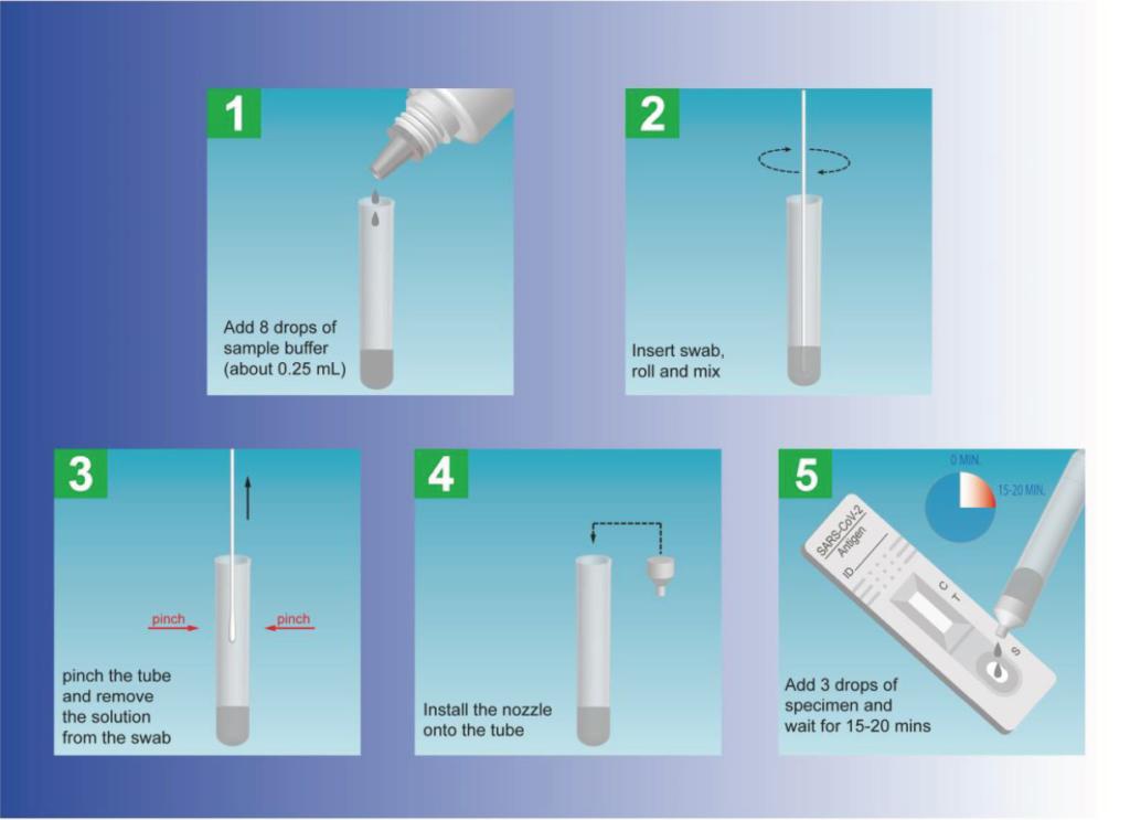 Coronaschnelltest, Test, Ablauf, Verfahren